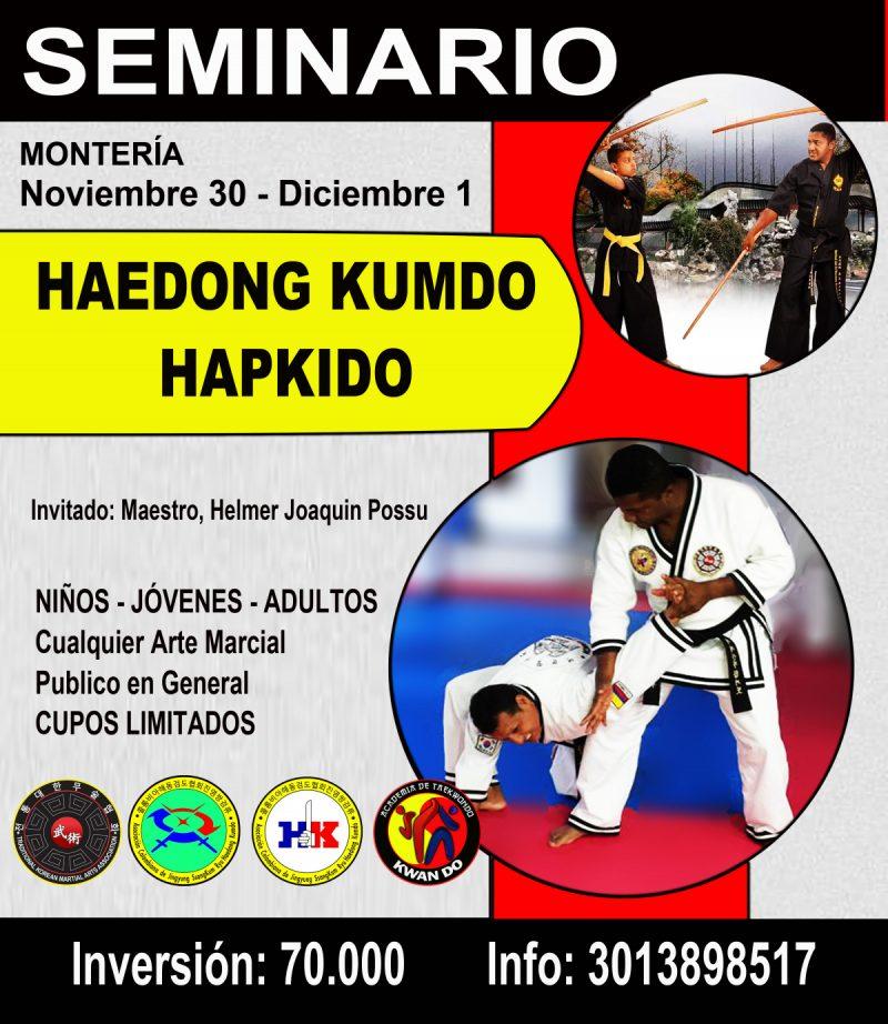 SEMINARIO HAEDONG KUMDO & HAPKIDO